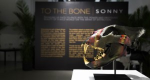 Sonny 7 - Event Recap: To The Bone Pop-Up Exhibit by Sonny May 17-20, 2018 #ToTheBoneProject