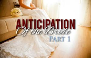 The Anticipation of The Bride...Part 1