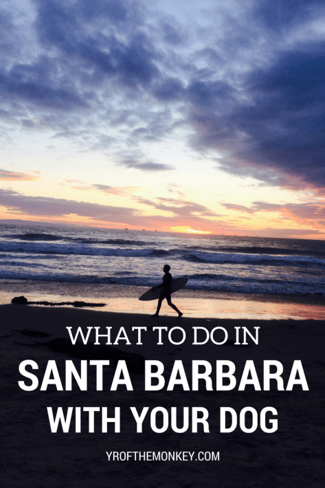 This is a seasoned traveling dog mom's guide to Pet Friendly Santa Barbara, the beach town in southern California, USA which is super dog friendly! Read about dog friendly beaches, restaurants and other fun activities to spend a weekend there with your best friend. Pin this to your California or USA board now! #santabarbara #dogfriendly #petfriendlyvacation #dogfriendlytravel #california #USA