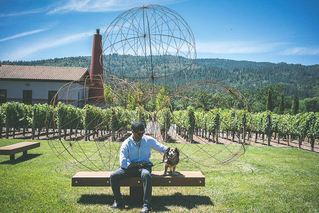 dog friendly Calistoga, dog friendly hotels in Calistoga, pet friendly Calistoga, pet friendly hotels Calistoga, pet friendly activities Calistoga, dog friendly guide to Calistoga, dog friendly attractions Calistoga, what to do with your dog in Calistoga