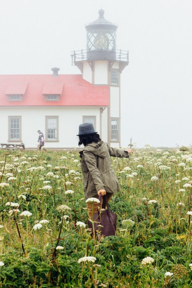 Pt. Cabrillo Mendocino California dogs lighthouse travel pets California coast