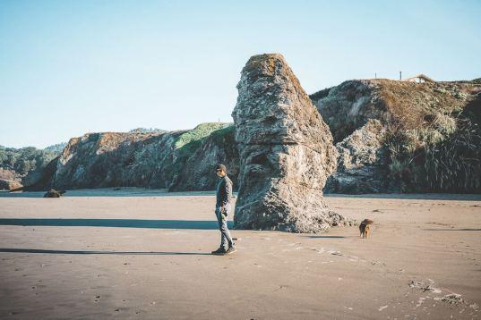 dog friendly beaches in Mendocino