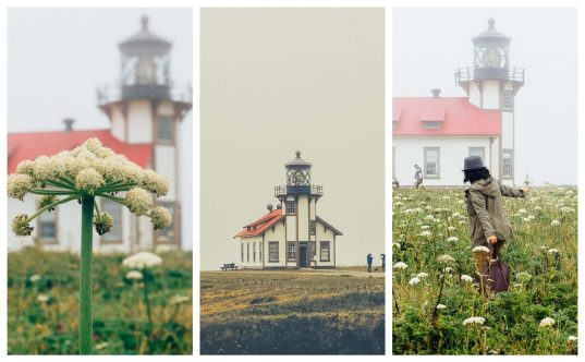Point Cabrillo lighthouse is a dog friendly lighthouse in Mendocino