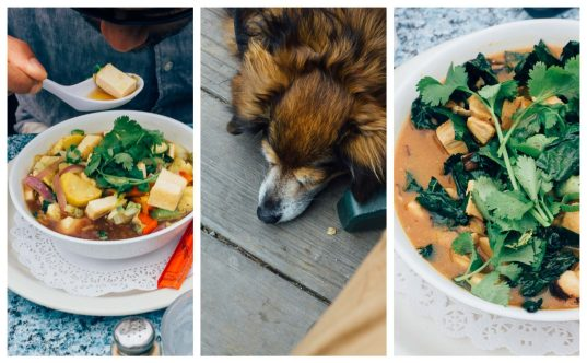 Mendocino cafe, a dog friendly restaurant in Mendocino