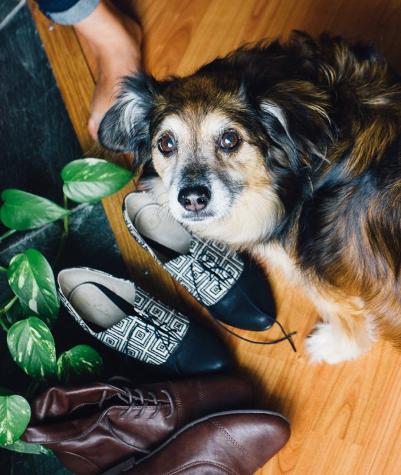 Cruelty free fashion sustainable ethical no leather no wool no silk no fur clothes cotton local style synergy clothing santa cruz Angela Roi cosmetics ecofiriendly Mooshoes shoes los angeles