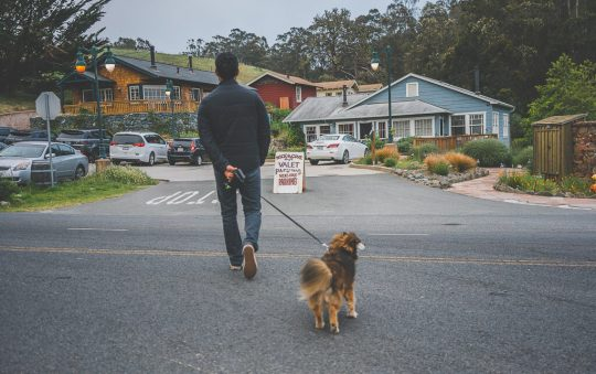 Nick's cove at Point Reyes, where to stay in Point Reyes, dog friendly hotels in Point Reyes
