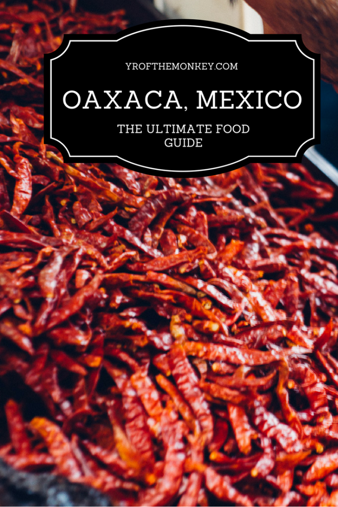 Read this Oaxacan cuisine post for the ultimate Oaxaca, Mexico food guide to Mexico's food capital which has dining options for every budget and palate. Fine dining, cafes, markets, moles, chocolates, cheese and so much more to discover with yummy photos. Oaxaca food guide| Oaxaca street food| Mexico travel guide| Mexico vacation| Foodie guide| #oaxaca #mexico #foodieguide