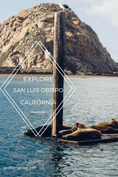 San Luis Obispo Morro Bay pet friendly travel California