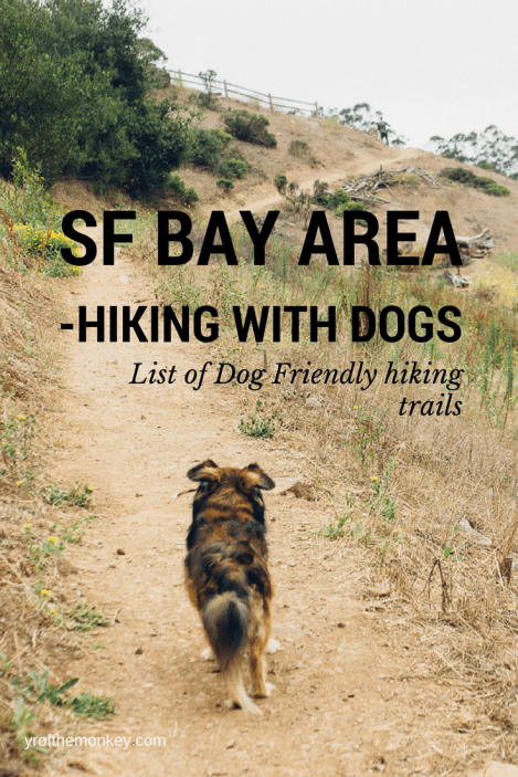 Dog Friendly Hiking trails San Francisco Bay area