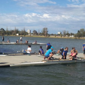 social rowers