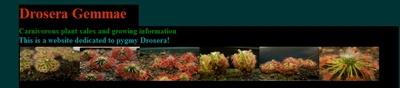אתר הכולל מידע רב על גידול טלליות ננסיות