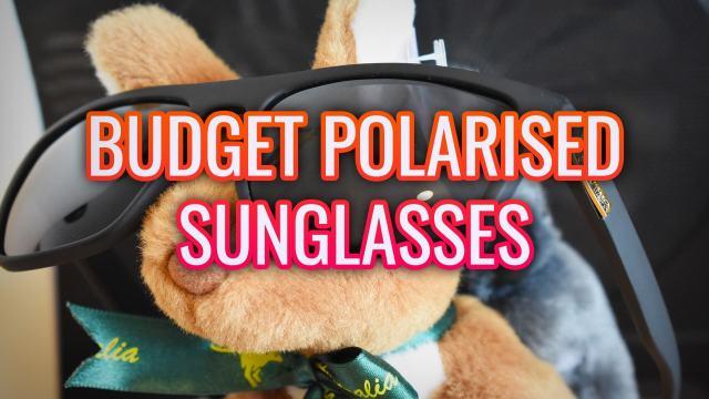 Budget Polarized Sunglasses