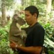 australie en vidéo