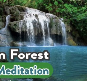 Rainforest Meditation Music Relaxing Meditation Music