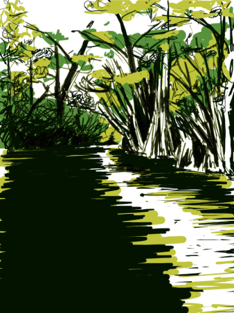 florida-river