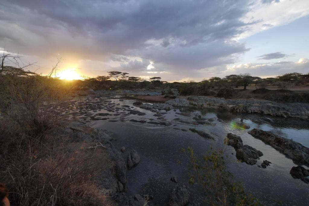 Serengeti hippo pool sunset