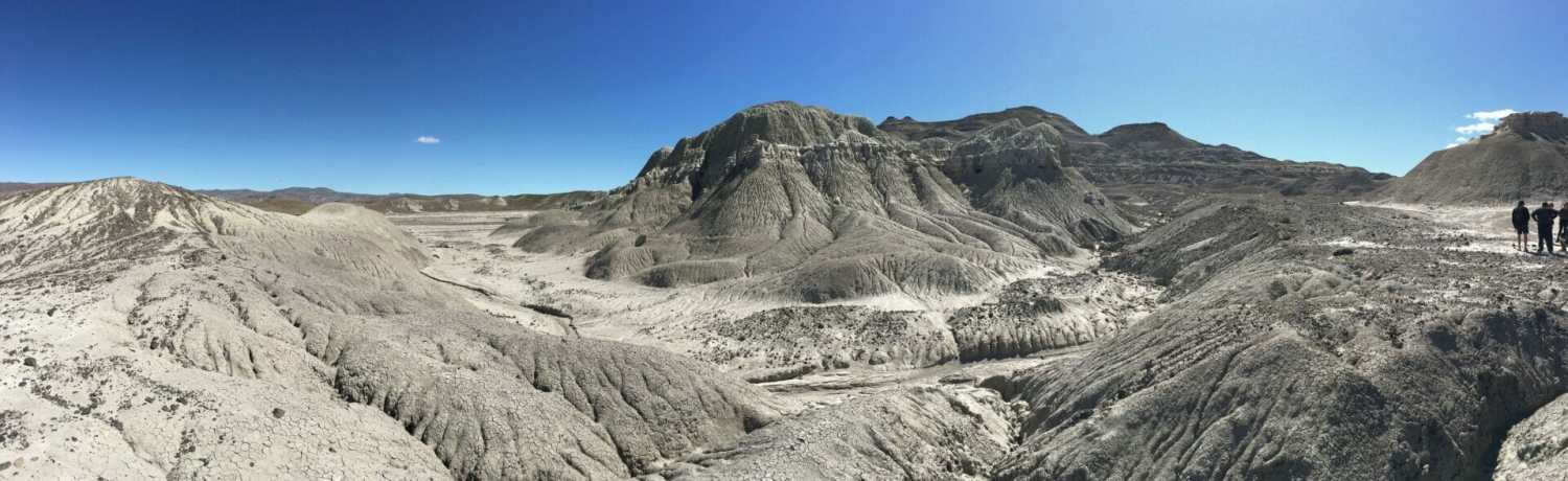 Petrified Forest Argentina Panorama