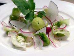 Scallop Cerviche at Berners Tavern | ytTastes | Yvanne Teo