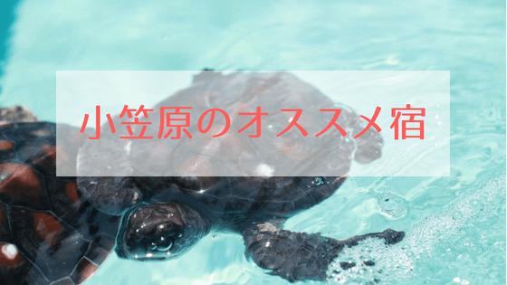 小笠原父島のオススメ宿泊先
