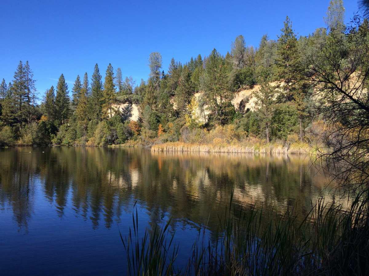 Hirschmans Pond Photo