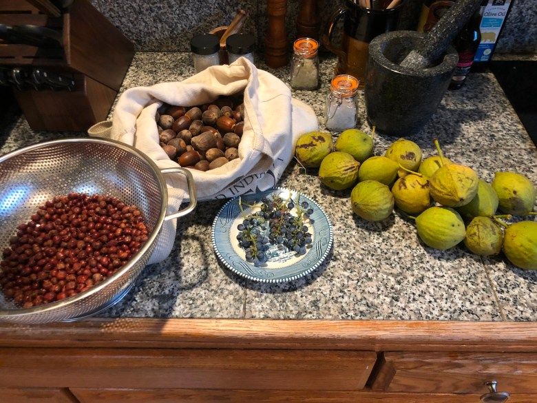 Common manzanita berries, black oak acorns, California wild grapes, salt and black walnuts. Photo by Peter Nelson