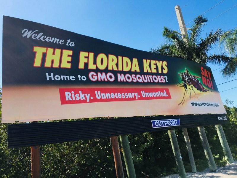 gmo mosquito billboard
