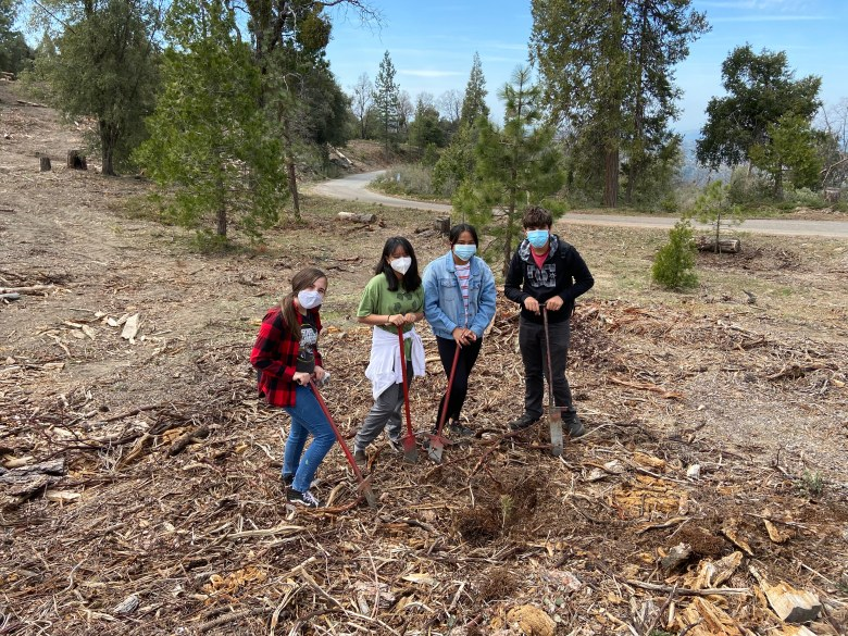 Eighth-grade students Grace Carino, Danny Rodriguez, Sofia Craven, and Ashea Lucero planting seedlings to support ecological restoration on the Sequoia National Forest.