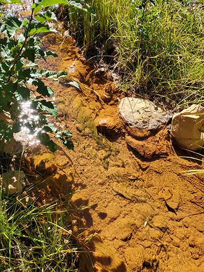 Acide mine drainage in Leviathan Creek