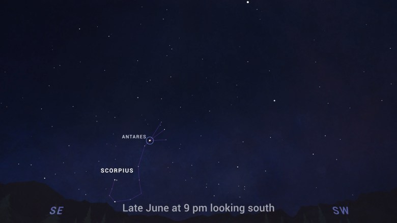 The constellation Scorpius, with brilliant Antares at its heart, is a highlight of summer skies beginning in June.