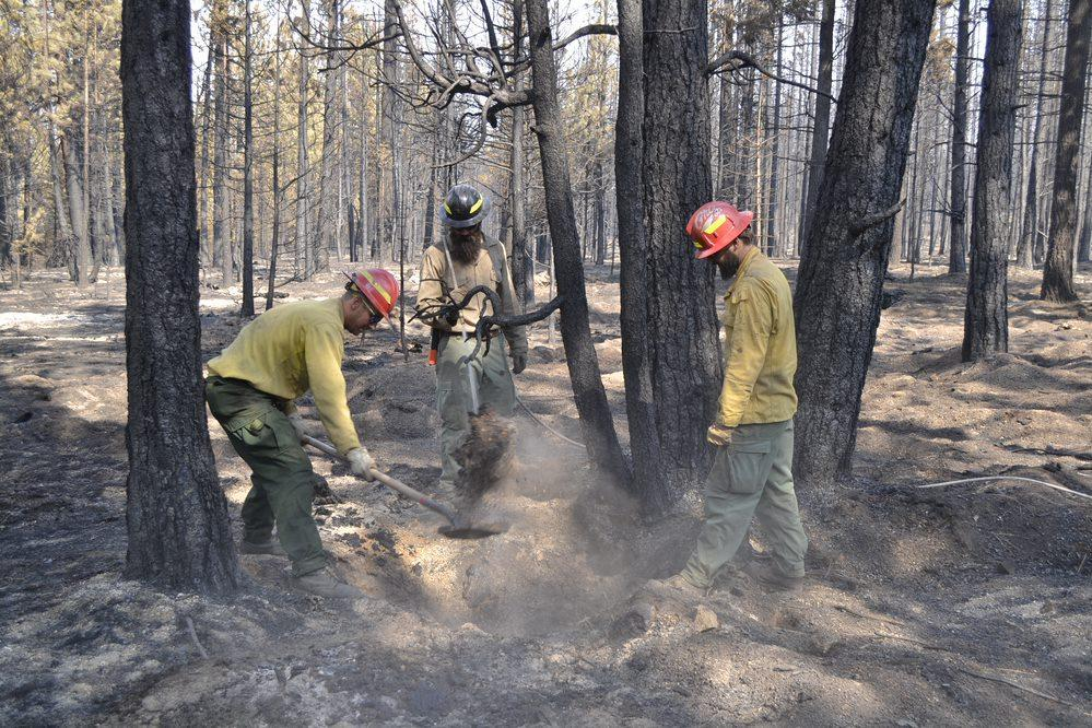 Members of Griz One from Missoula, MT mop up areas of heat near Four Mile Hill.