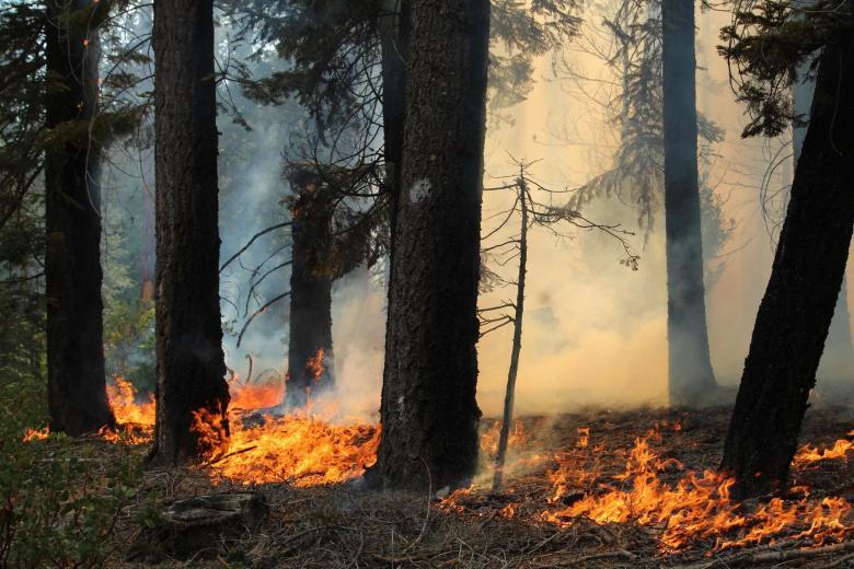 Ground Fire Along SE Flank.