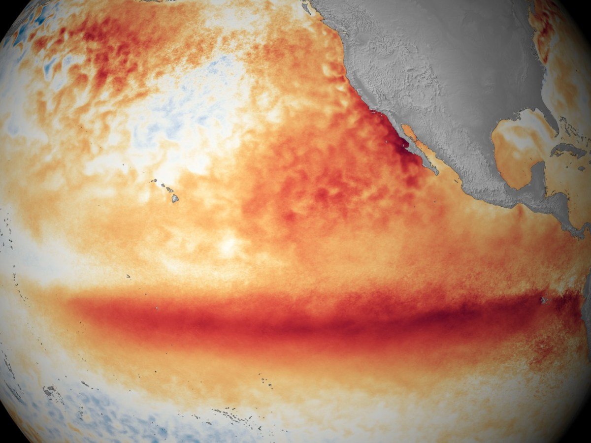Satellite sea surface temperature departure in the Pacific Ocean for the month of October 2015, where darker orange-red colors are above normal temperatures and are indicative of El Niño. (NOAA)