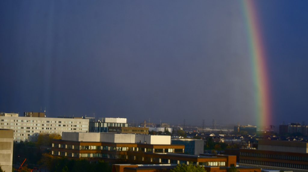 Horizon of York buildings with a rainbow going over them.