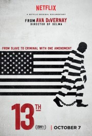 13th documentary cover image.