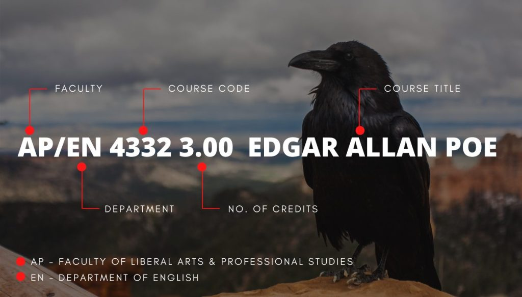 A raven perched on a hill top with the valley below in the background and the course nomenclature of AP/EN 4332 Edgar Allan Poe