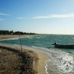 Protecting Yucatan's Beaches