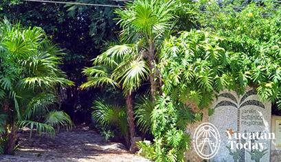 cicy-jardin-botanico