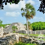 A Seven-Day Stay in Yucatán April 2018