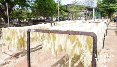 Hacienda-Sotuta-AJ-2