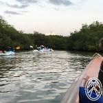 Viajando con Niños por Yucatán