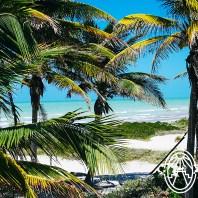El-Cuyo-Cocos-Palmeras-Beach-Playa