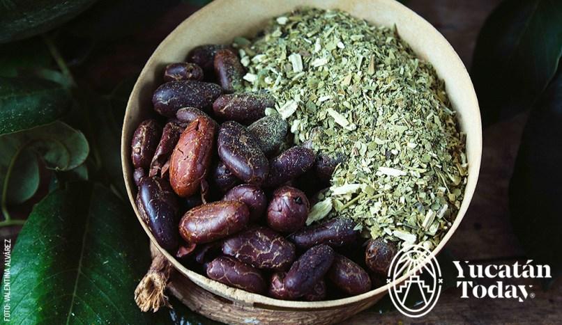 Maya Medicine