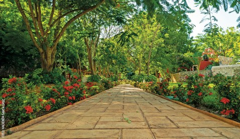 hacienda-santa-cruz-jardin