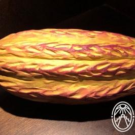 Choco-Story-Valladolid-cacao-by-Andrea-Mier-y-Teran