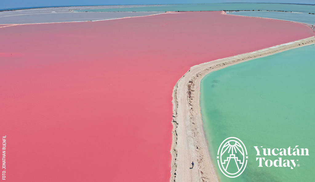 Un mundo color rosa: Las Coloradas