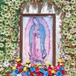 The Tradition of La Rama