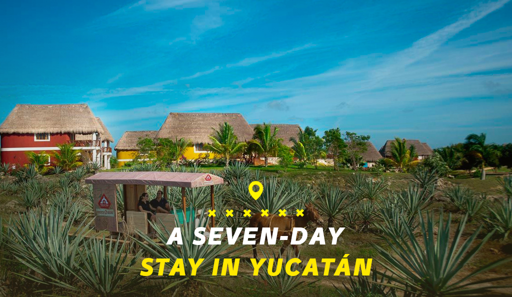 Seven Day Stay: March 2020