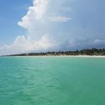 Días de Playa, Días de Cultura