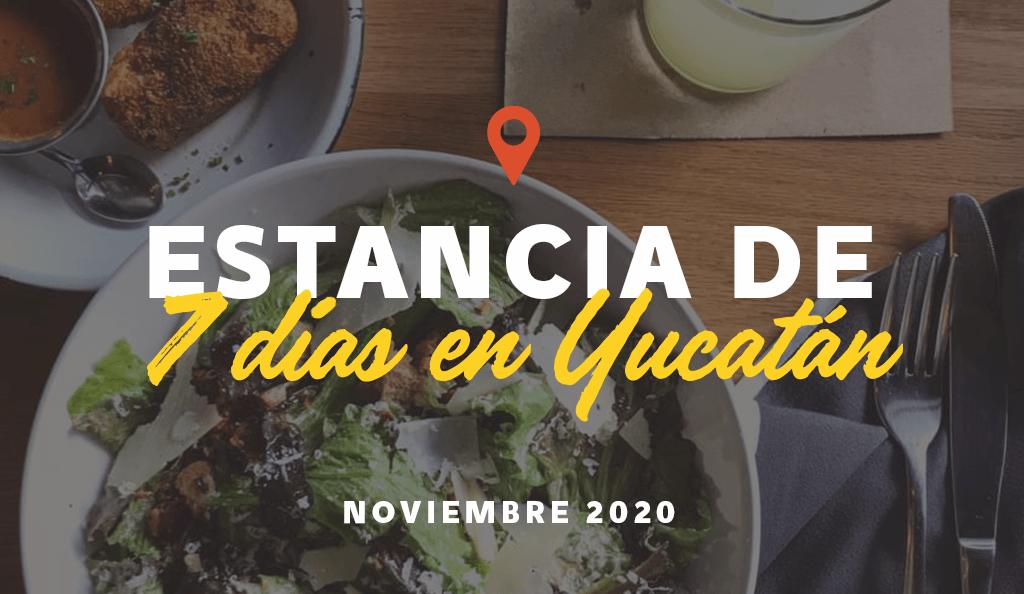 Estancia de Siete Días: Noviembre 2020