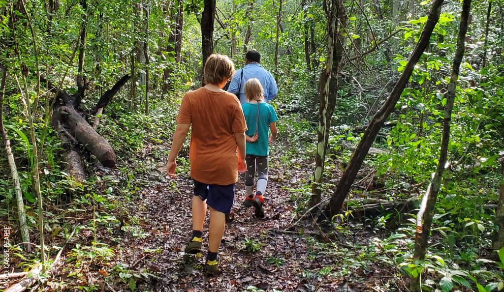 Senderismo y Observación de Aves con Niños en Yucatán